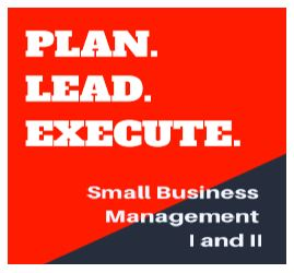 lead plan execute