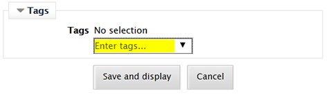 Screenshot of enter tags interface