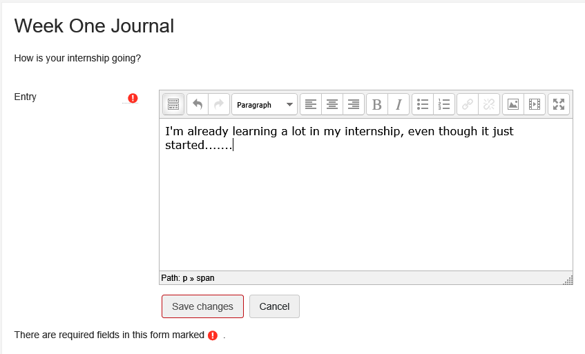 Screenshot of student view of journal activity