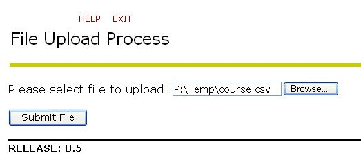 File Upload Process window - Submit