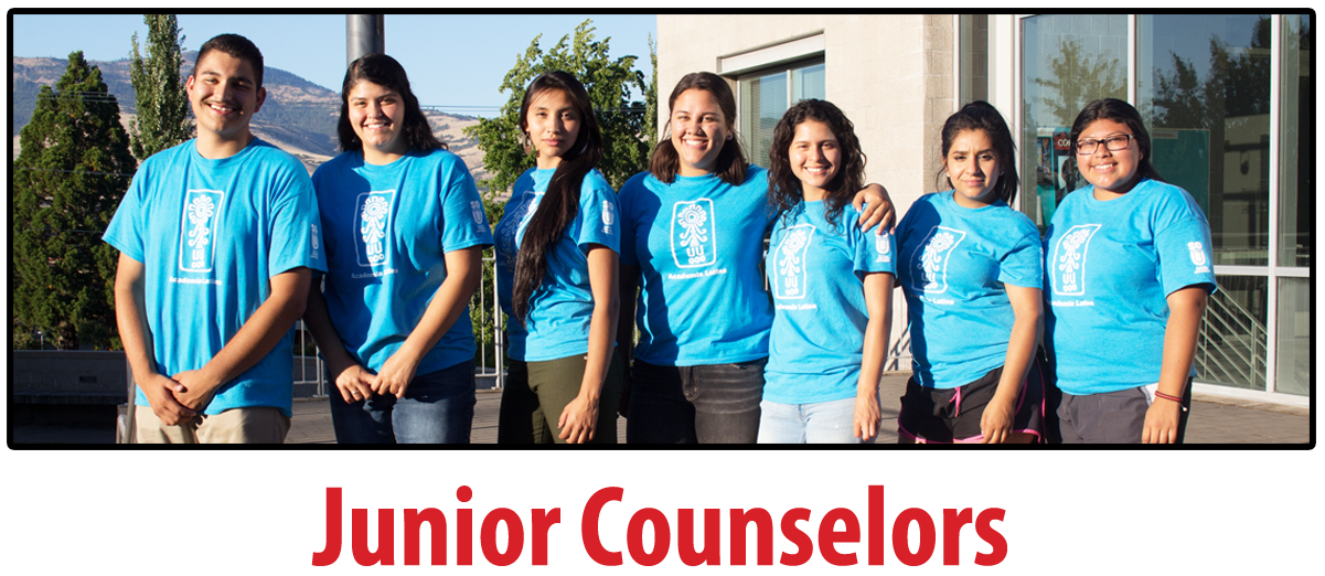 Junior Counselor Students, web page button