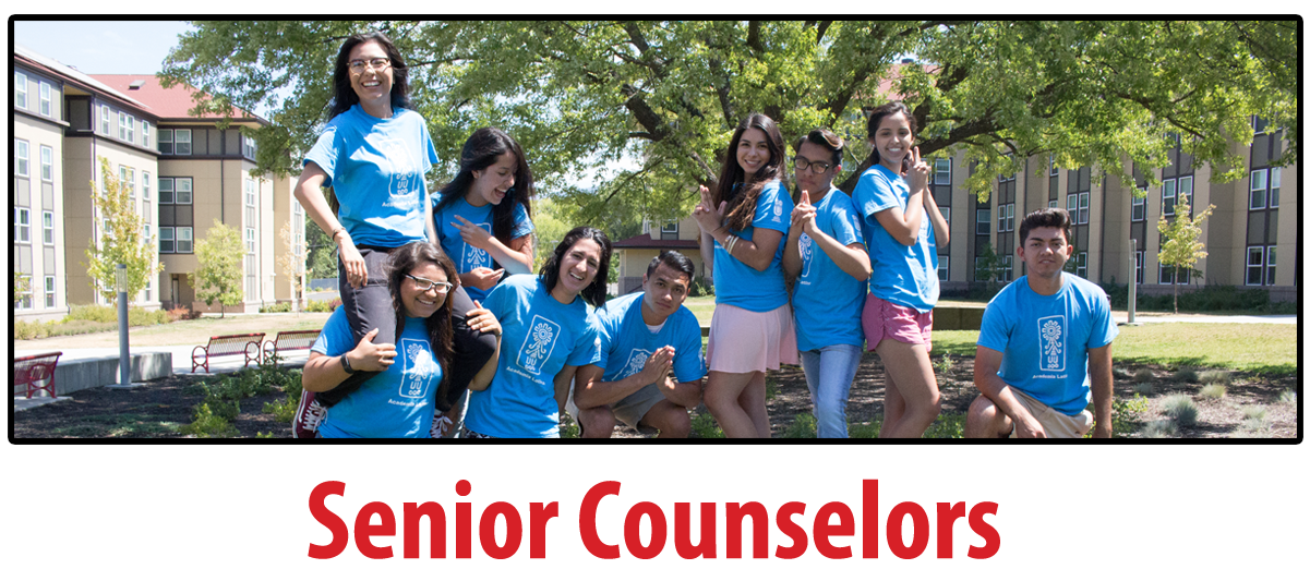 Senior Counselor Students, web page button
